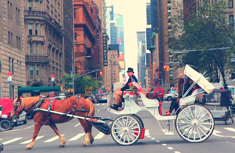 Coche de caballos en Nueva York